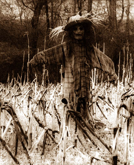 Why do Scarecrows Scare People?