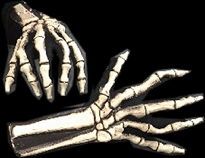 Pair Skeleton Hands
