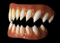 Gaul FX Fake Teeth