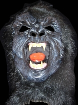 Gorilla with Fangs