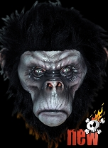 Bad Chimp Black