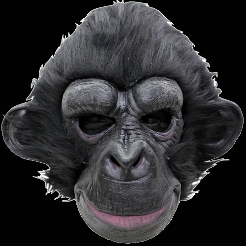 Black Chimp