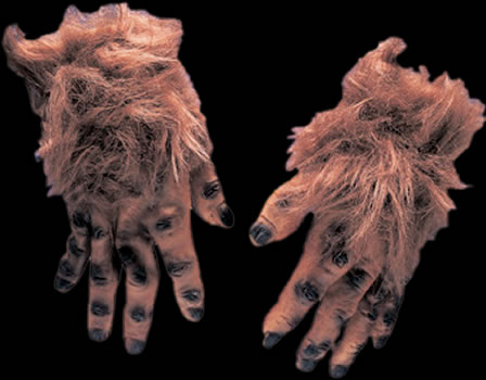 Brown Hairy Hands