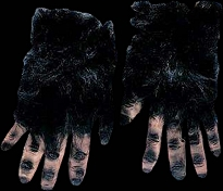 Black Hairy Hands