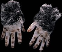 Grey Hairy Hands