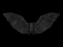 Feathered Wings Black