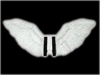 Feathered Wings White