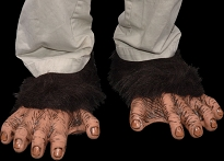Chimp Feet With Hair