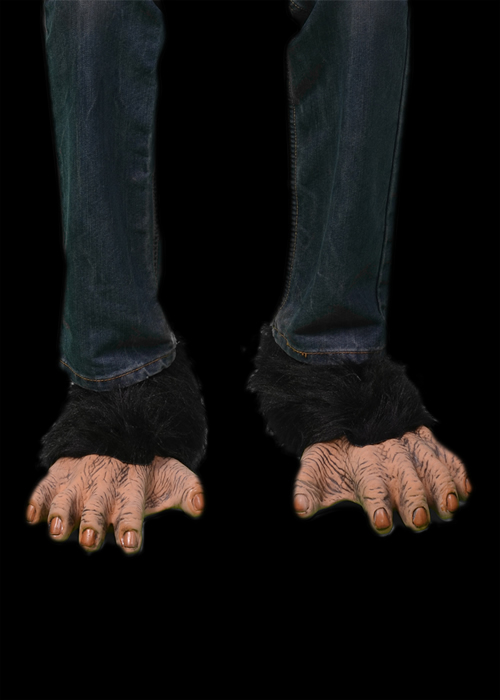 Brown Chimp Feet