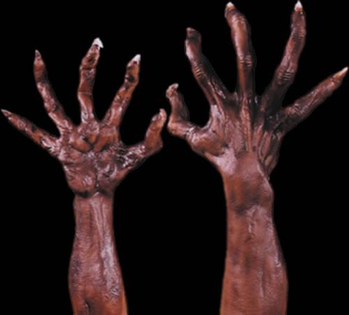 Werewolf Halloween Costumes