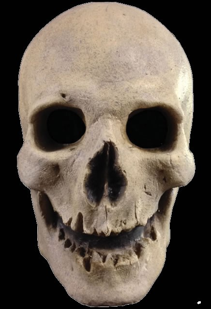 Antique Skull